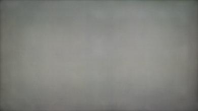 LG LF5500 50% Uniformity Picture