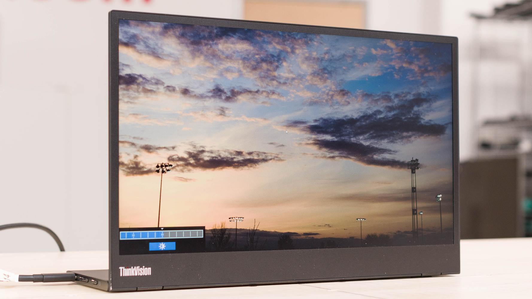 Lenovo ThinkVision M14 Picture