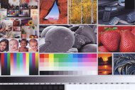 Canon PIXMA TR150 Side By Side Print/Photo