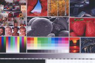 Epson WorkForce Pro WF-3730 Side By Side Print/Photo