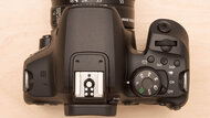 Canon EOS Rebel T8i Body Picture