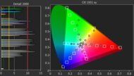 Sony X750H Color Gamut Rec.2020 Picture