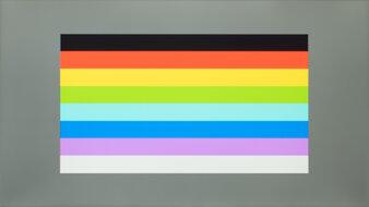 ViewSonic VG1655 Color Bleed Horizontal