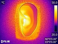 Sennheiser HD 4.50 BTNC Breathability After Picture