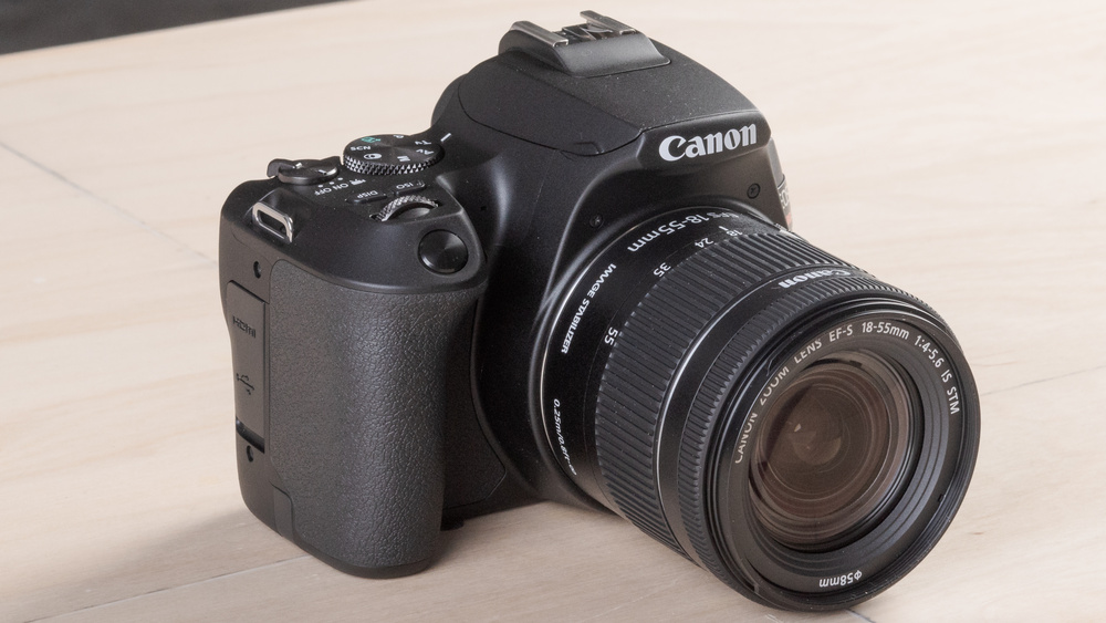 Canon EOS Rebel SL3 Picture