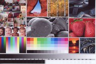 Epson Expression Premium XP-6100 Side By Side Print/Photo