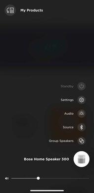 Bose Home Speaker 300 App Picture