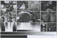 HP LaserJet MFP M234sdwe Side By Side Print/Photo