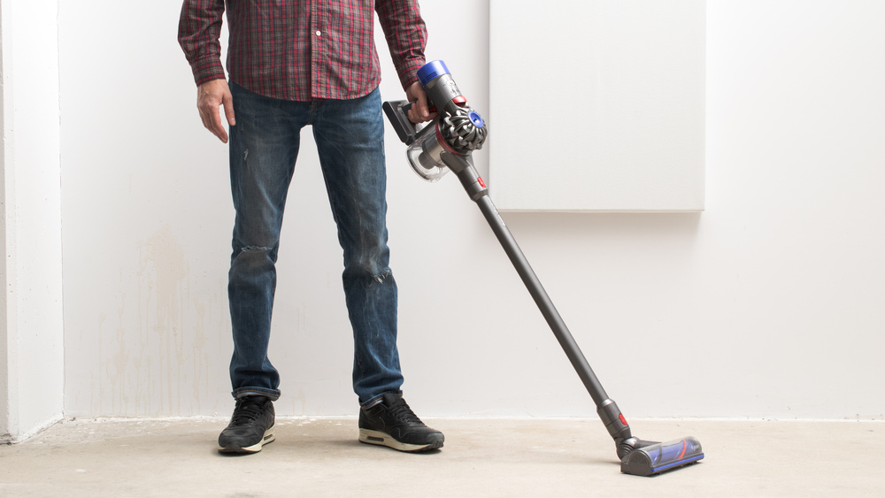 Dyson V7 Animal Picture