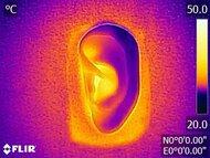 Razer Hammerhead True Wireless 2021 Breathability After Picture