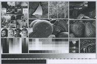 HP LaserJet M209dwe Side By Side Print/Photo