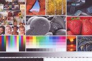 HP OfficeJet 5255 Side By Side Print/Photo