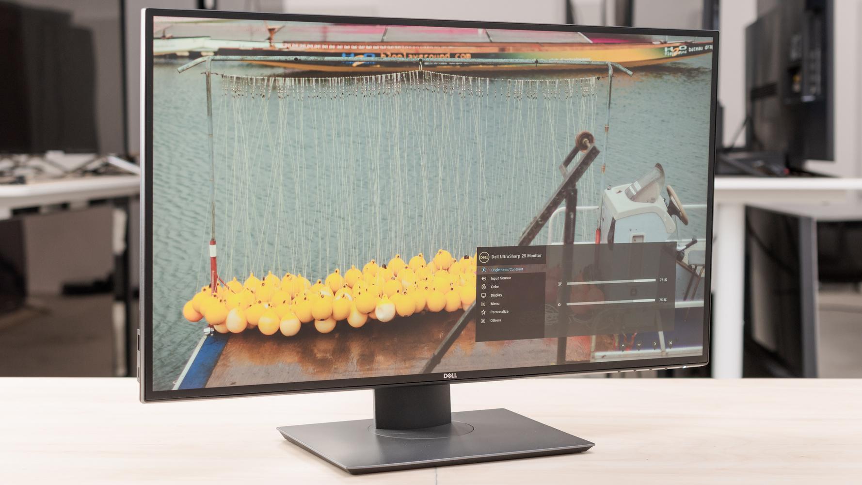 Dell UltraSharp U2520D Picture