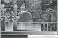 Kyocera ECOSYS P2235dw Side By Side Print/Photo