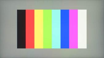 MSI Optix G273QF Color Bleed Vertical