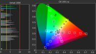 Sony X80J Color Gamut Rec.2020 Picture