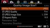 Sony α6100 Screen Menu Picture