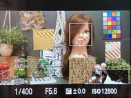 Sony RX100 VII Screen With All The Assistants