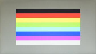 Dell E2220H Color Bleed Horizontal