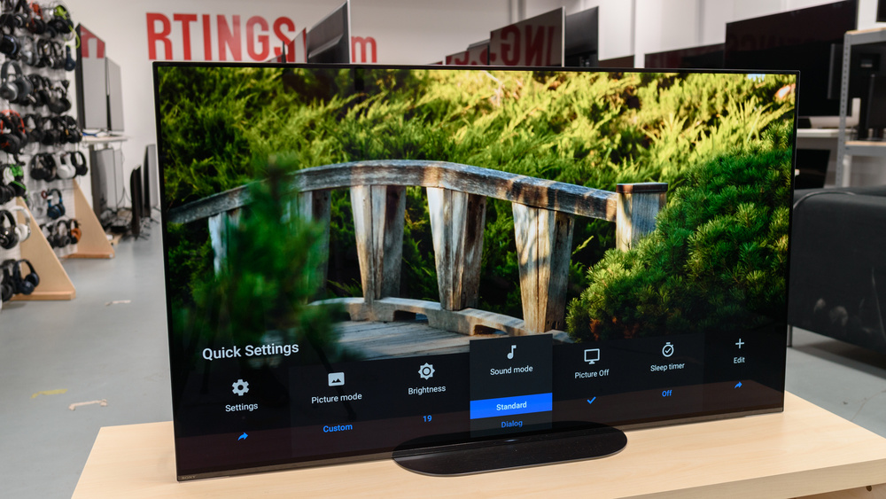 Sony A9G OLED Picture