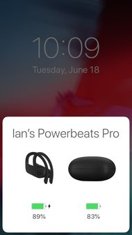 Beats Powerbeats Pro Truly Wireless  App Picture