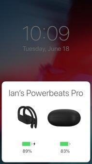Beats Powerbeats Pro Truly Wireless App Picture