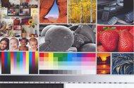 HP OfficeJet Pro 9015e Side By Side Print/Photo