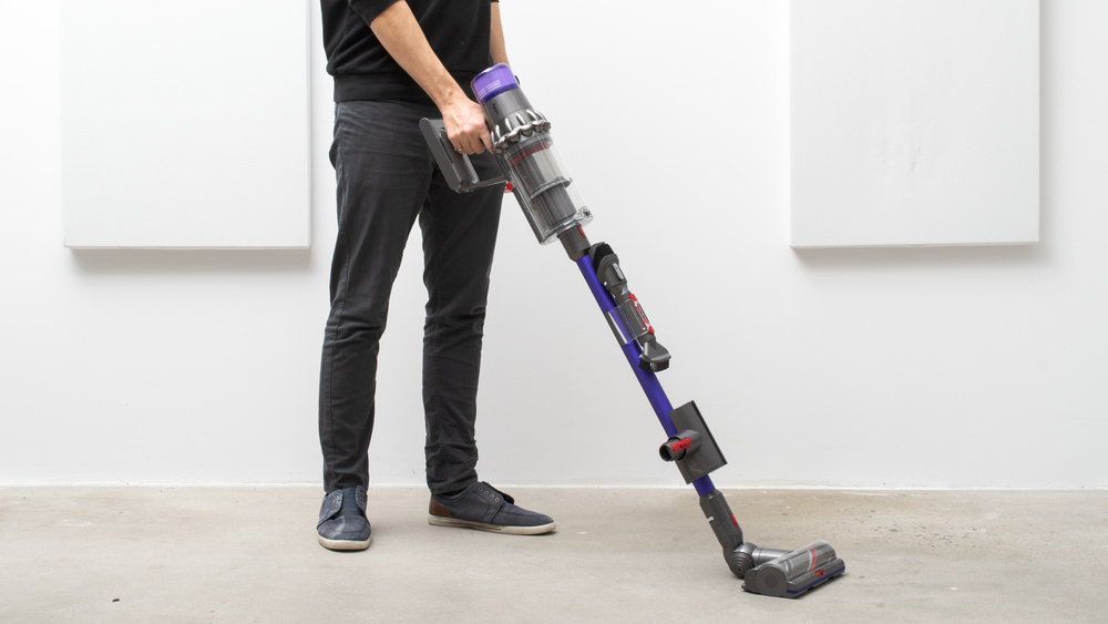Dyson V11 Animal Picture