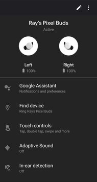 Google Pixel Buds 2020 Truly Wireless App Picture