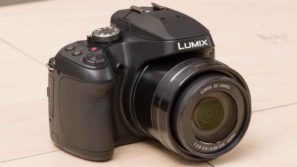 Panasonic LUMIX FZ80 Picture
