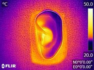 Cambridge Audio Melomania 1+ True Wireless Breathability After Picture
