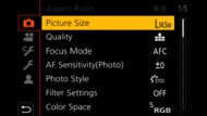 Panasonic LUMIX G100 Screen Menu Picture