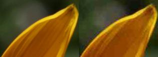 Пример артефактов для одного и того же разрешения в зависимости от степени сжатия